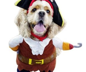 pirata-can