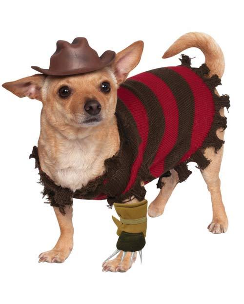 disfraz freddy krueger perro